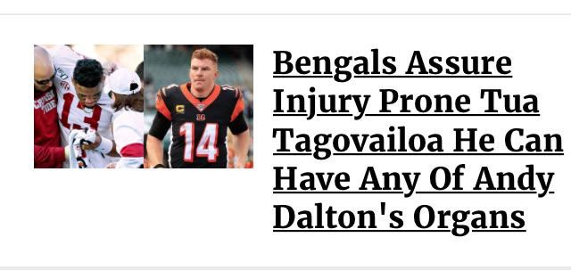 amazing sports gifs from all around the internet brought to one collection to keep you occupied all day long. The cover photo is a meme about the Cincinnati Bengals being desperate to keep their quarterbacks healthy, even cannibalizing Andy Dalton if necessary in a sardonic way