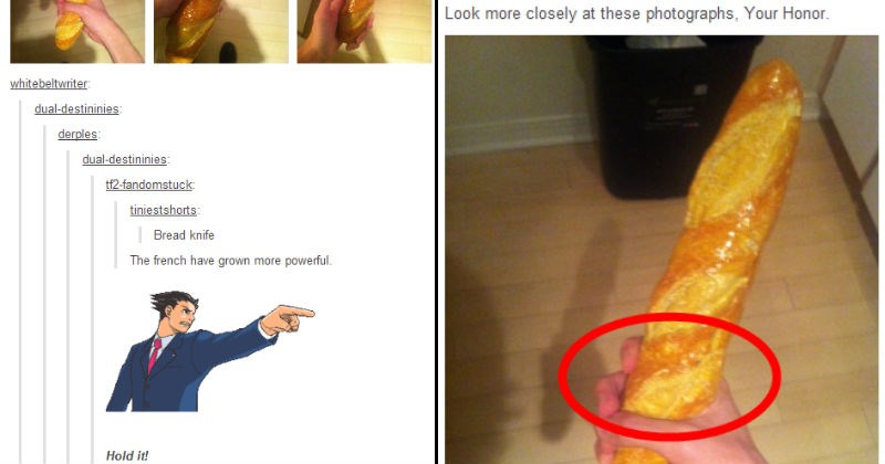 Tumblr users argue over a picture of a bread knife using lawyer language | phoenix wright ace attorney whitebeltwriter: dual-destininies: derples: dual-destininies: tf2-fandomstuck: tiniestshorts: Bread knife french have grown more powerful. Hold ! photo of a hand holding bread and a red circle