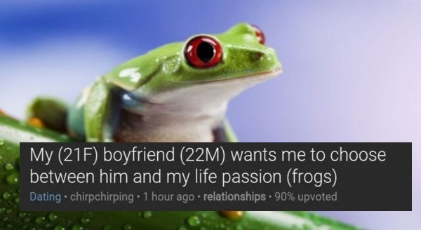 Girl Debates What To Do Following Her Boyfriend's Request To Choose Between Him And Her Frogs | my 21f boyfriend 22m wants me to choose between him and my life passion frogs pic of a green frog with round red eyes