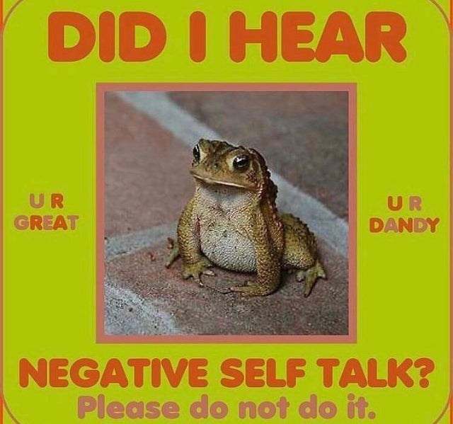 top ten 10 wholesome memes daily | cute frog pic DID HEAR UR GREAT UR DANDY NEGATIVE SELF TALK? Please do not do .