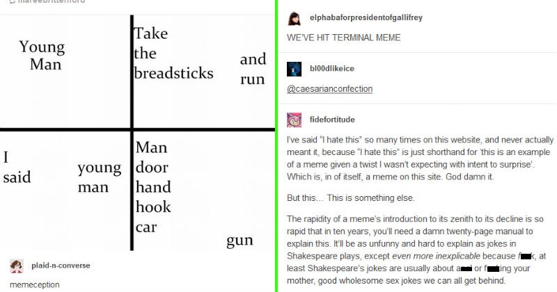 A discussion about a meme gets turned into a meme on tumblr | mareebrittenford Young Man Take breadsticks and run said young man Man door hand hook car gun plaid-n-converse memeception | elphabaforpresidentofgallifrey HIT TERMINAL MEME bl00dlikeice @caesarianconfection fidefortitude said hate this so many times on this website, and never actually meant because hate this is just shorthand this is an example meme given twist wasn't expecting with intent surprise Which is itself meme on this site