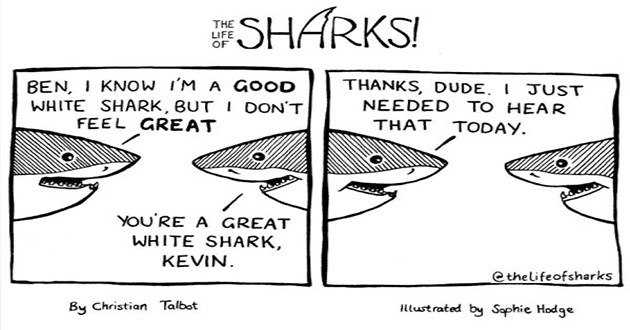 sharks comics lol funny smart clever art instagram sea creatures life | black and white illustration ESHARKS LIFE BEN KNOW GOOD WHITE SHARK,BUT DON'T FEEL GREAT THANKS, DUDE JUST NEEDED HEAR TODAY GREAT WHITE SHARK, KEVIN. Cthelifeofsharks By Christian Talbot Illustrated by Sephie Hodge