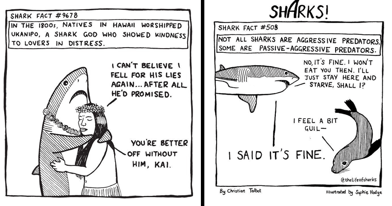 Funny and cute shark comics   SHARK FACT #9678 180os, NATIVES UKANIPO SHARK GOD WHO SHOWED KINDNESS LOVERS DISTRESS HAWAII WORSHIPED CAN'T BELIEVE FELL HIS LIES AGAIN AFTER ALL HE'D PROMISED BETTER OFF WITHOUT HIM, KAI   NOT ALL SHARKS ARE AGGRESS IVE PREDATORS. SOME ARE PASSIVE-AGGRESSIVE PREDATORS. NO S FINE. WON'T EAT THEN JUST STAY HERE AND STARVE, SHALL 1 FEEL BIT GUIL SAID 'S FINE, ethelifeofsharks By Christian Talbot Illustrated by Sophie Hodge