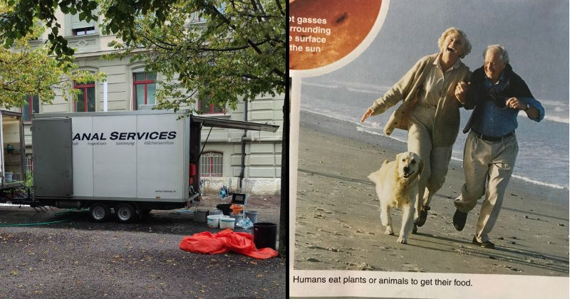Stupid and funny design fails that were someone's one job | ANAL SERVICES nalt Inspektion Sanierung Flächenservices www.anlh | hot gasses surrounding e surface sun Humans eat plants or animals get their food. pic of an elderly couple running on a beach with a dog