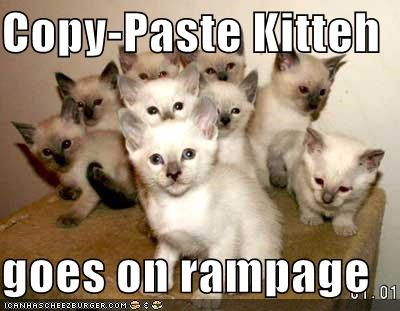 Copy-Paste Kitteh goes on rampage - Cheezburger - Funny