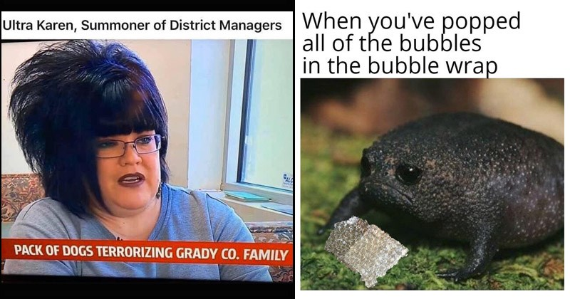 Funny random memes | woman with big teased up hair and straight bangs Ultra Karen, Summoner District Managers PACK DOGS TERRORIZING GRADY CO. FAMILY | sad frog: popped all bubbles bubble wrap