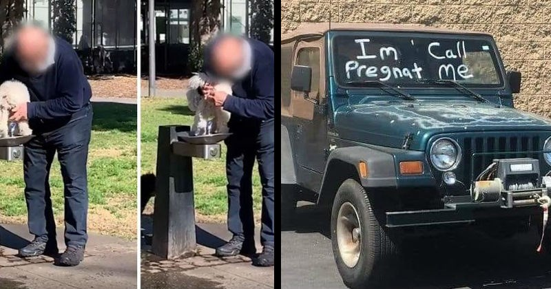 Horrible selfish moments of failure, cringe and trashiness   man in a park washing his dog in a drinking water fountain   truck with the windshield sprayed with I'M PREGNANT PREGNAT CALL ME