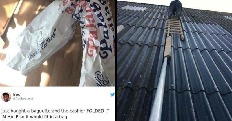 Dumb moments of failure and facepalm | reni fred @fredboycolor just bought baguette and cashier FOLDED HALF so would fit bag | person climbing a roof on a ladder balanced on a single pole