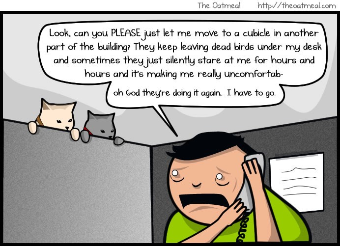 funny cat comics | the oatmeal Look, can PLEASE just let move cubicle another part building? They keep leaving dead birds under my desk and sometimes they just silently stare at hours and hours and 's making really uncomfortab- oh God they're doing again have go.