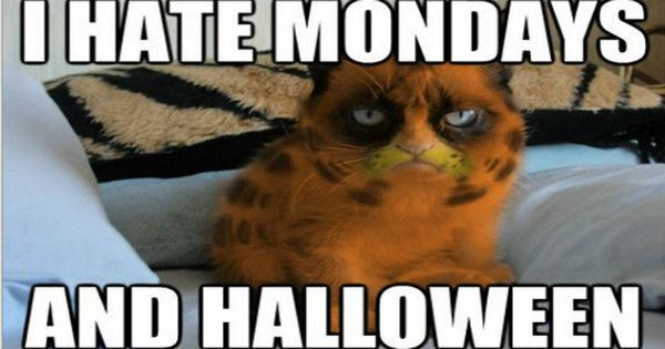 dogs pets halloween Memes Cats - 1084421