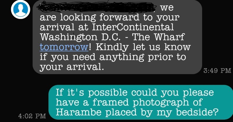 Guy asks the hotel to provide him a framed picture of Harambe | are looking forward arrival at InterContinental Washington D.C Wharf tomorrow! Kindly let us know if need anything prior arrival. 3:49 PM If 's possible could please have framed photograph Harambe placed by my bedside?