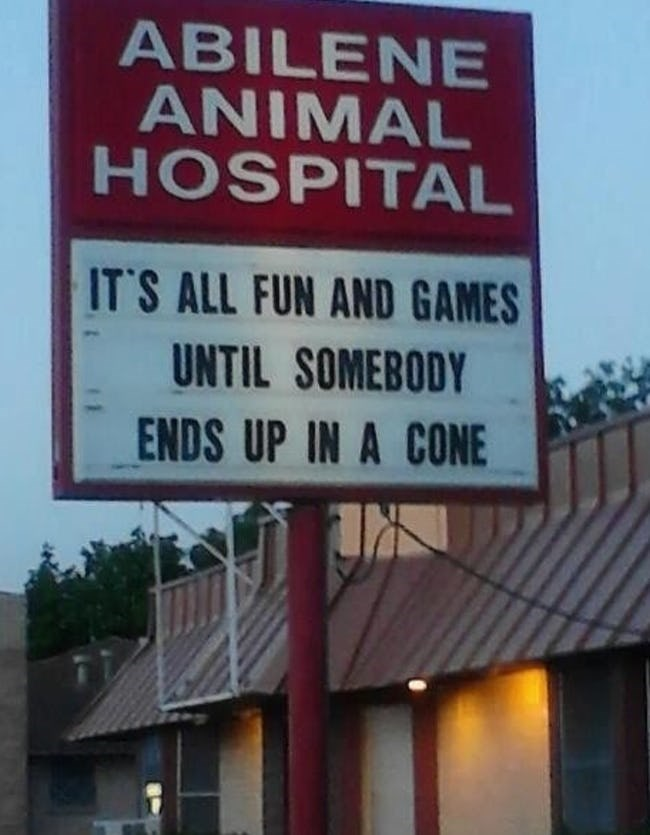 clever and funny vet signs | ABILENE ANIMAL HOSPITAL 'S ALL FUN AND GAMES UNTIL SOMEBODY ENDS UP CONE