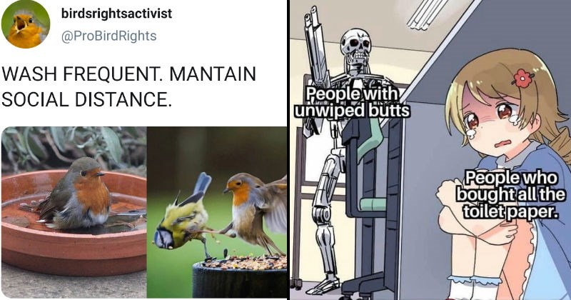 Tweets and funny memes about self quarantine, panic buying and coronavirus | birdsrightsactivist @ProBirdRights WASH FREQUENT. MANTAIN SOCIAL DISTANCE. bird in a birdbath and two birds fighting | People with unwiped butts Peoplewho boughtall toilet paper.