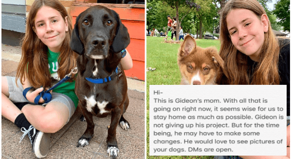 "Changes In The Popular Twitter Account ""I've Pet That Dog"" Amid coronavirus Restrictions 