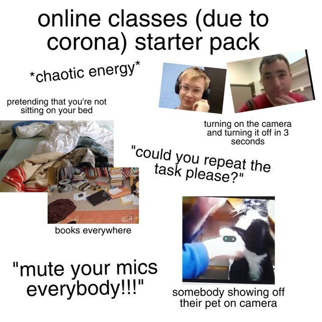 """top ten daily starter pack memes 