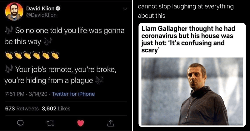 Funny tweets, funny memes, dank memes, dank tweets, social distancing, covid-19, coronavirus, coronavirus tweets, quarantine | David Klion @DavidKlion So no one told life gonna be this way job's remote broke hiding plague | David Farrier @davidfarrier cannot stop laughing at everything about this Liam Gallagher thought he had coronavirus but his house just hot s confusing and scary'