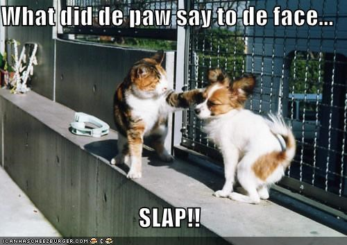 D Face Slap