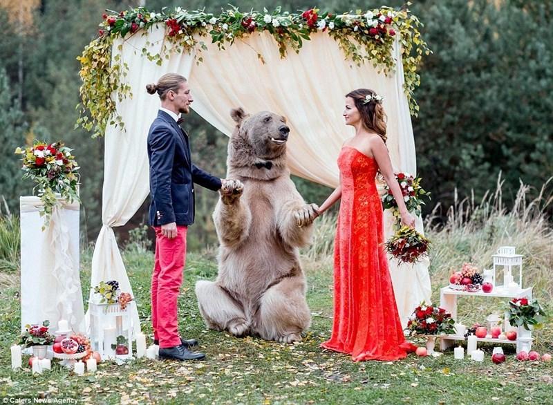 photos wedding viral - 1091589