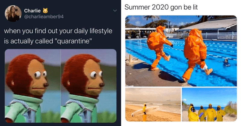 "Funny memes about being in quarantine due to coronavirus/covid-19 | Charlie 8 @charlieamber94 find out daily lifestyle is actually called ""quarantine"" monkey puppet 