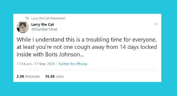 cat pov tweets | t7 Larry Cat Retweeted Larry Cat @Number10cat While understand this is troubling time everyone, at least not one cough away 14 days locked inside with Boris Johnson 11:14 am 17 Mar 2020 Twitter iPhone 2.3K Retweets 15.5K Likes
