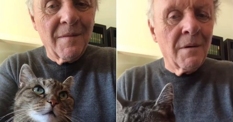 Anthony Hopkins Plays The Piano For His Cat While in Quarantine | cute cat with green eyes sitting in actor anthony hopkins' lap while he's filming himself playing piano