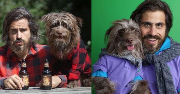 dogs lookalike twins - 1095173