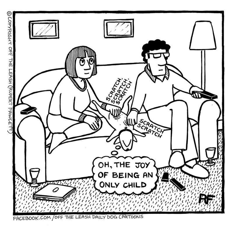 dog comics about being in quarantine | drawing illustration couple sitting on a couch and scratching the belly of a dog lounging between them SCRATCH SCRATCH BEING AN ONLY CHILD JOY RF FACEBOOK.COM /OFF LEASH DAILY DOG CARTOONS OCOPYRIGHT OFF LEASH (RUPERT FAWCETT SCRATCH, SCRATCH SCRATCH,