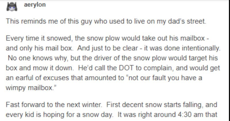 Dad takes a revenge on a snow plow with a steel mailbox | aerylon This reminds this guy who used live on my dad's street. Every time snowed snow plow would take out his mailbox and only his mail box. And just be clear done intentionally. No one knows why, but driver snow plow would target his box and mow down. He'd call DOT complain, and would get an earful excuses amounted not our fault have wimpy mailbox Fast forward next winter. First decent snow starts falling, and every kid is hoping snow