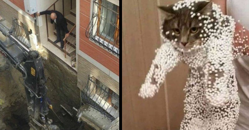 Chaos, mistakes and failures | man coming down a staircase to find a deep hole being dug at the bottom | cat being held by its scruff covered in Styrofoam balls