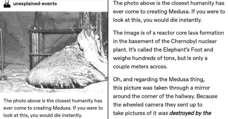 Tumblr thread describes a monster mold that has the powers of Medusa | unexplained-events photo above is closest humanity has ever come creating Medusa. If were look at this would die instantly | image is reactor core lava formation basement Chernobyl nuclear plant s called Elephant's Foot and weighs hundreds tons, but is only couple meters across. Oh, and regarding Medusa thing, this picture taken through mirror around corner hallway. Because wheeled camera they sent up take pictures destroyed