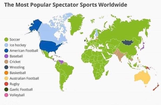 top ten daily infographics guides | Animal - Most Popular Spectator Sports Worldwide Soccer Ice hockey American Football Baseball Cricket Wrestling Basketball Australian Football Rugby Gaelic Football Volleyball