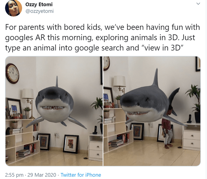"Goggle's 3D Animals Feature | Özzy Etomi @ozzyetomi parents with bored kids been having fun with googles AR this morning, exploring animals 3D. Just type an animal into google search and ""view 3D"" 2:55 pm 29 Mar 2020 Twitter iPhone shark in a living room"