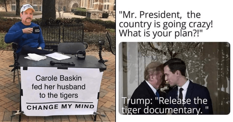 funny memes about tiger king on netflix | Steven CROWDER Carole Baskin fed her husband tigers CHANGE MY MIND | Mr. President country is going crazy is plan Trump Release tiger documentary.