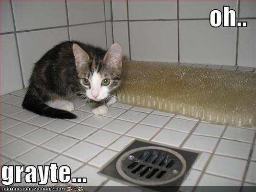 oh..  grayte...