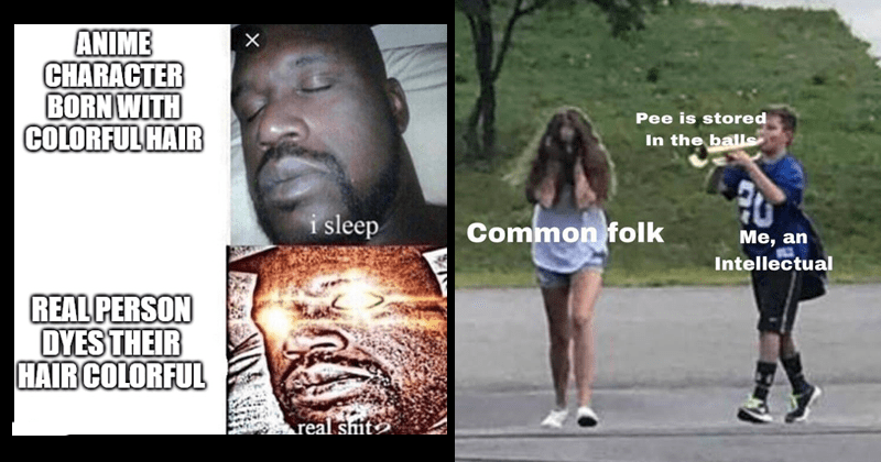 This week in meme history, pee ise stored in the balls, pregnant luigi, funny memes, dank memes, sleeping shaq | ANIME CHARACTER BORN WITH COLORFUL HAIR sleep REAL PERSON DYES THEIR HAIR COLORFUL real siit imgiip.com | boy following girl with trumpet Pee is stored balls Common folk an Intellectual