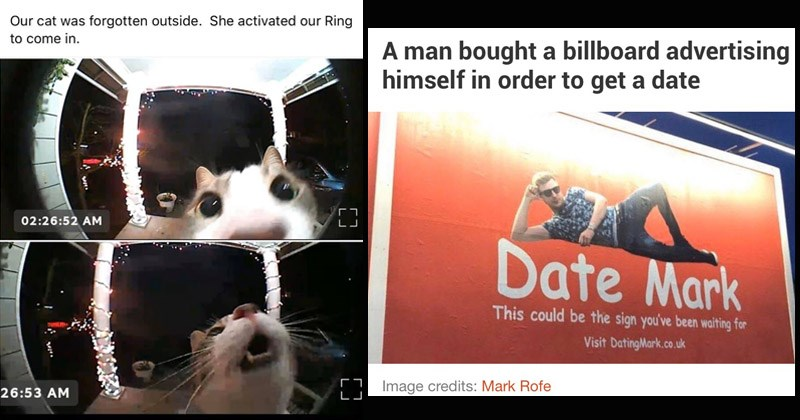 Funny random memes | Our cat forgotten outside. She activated our Ring come funny fish eye camera | man bought billboard advertising himself order get date Date Mark This could be sign been waiting Visit DatingMark.co.uk Image credits: Mark Rofe