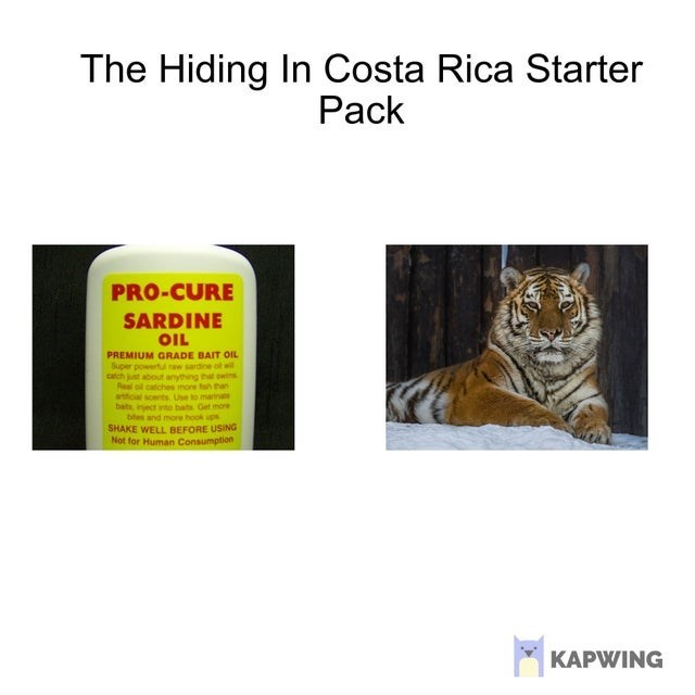top ten daily starter pack memes | Packaged goods - Hiding Costa Rica Starter Pack PRO-CURE SARDINE OIL PREMIUM GRADE BAIT OIL Super powertl raw sardine ol wil carch just about anything swis Real ol catches imore tah han atficial scents Use marinate bats, inject into bats Get more btes and more hook ups SHAKE WELL BEFORE USING Not Human Consumption KAPWING
