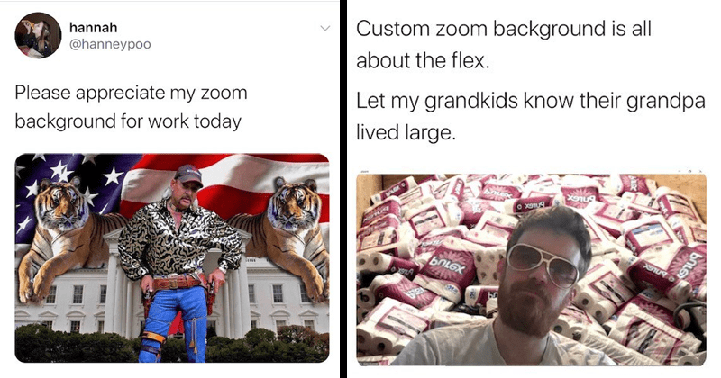 Funny and creative zoom backgrounds shared on twitter | Tiger King Joe Exotic hannah @hanneypoo Please appreciate my zoom background work today | Alex Washburne @Alex_Washburne Custom zoom background is all about flex. Let my grandkids know their grandpa lived large. toilet paper