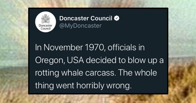 Twitter thread on whale explosion is lesson in listening to experts when it comes to coronavirus | Doncaster Council Doncaster Council @MyDoncaster November 1970, officials Oregon, USA decided blow up rotting whale carcass whole thing went horribly wrong. Why do bring this up? Well, this story can teach us 3 things about #coronavirus