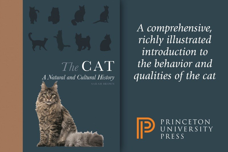 new book for cat lovers | comprehensive, richly illustrated introduction behavior and CAT Natural and Cultural History qualities cat SARAH BROWN PRINCETON UNIVERSITY PRESS