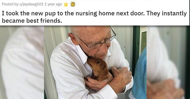 animals connection love wholesome aww cute uplifting happiness | I took the new pup to the nursing home next door. They instantly became best friends old man hugging a puppy