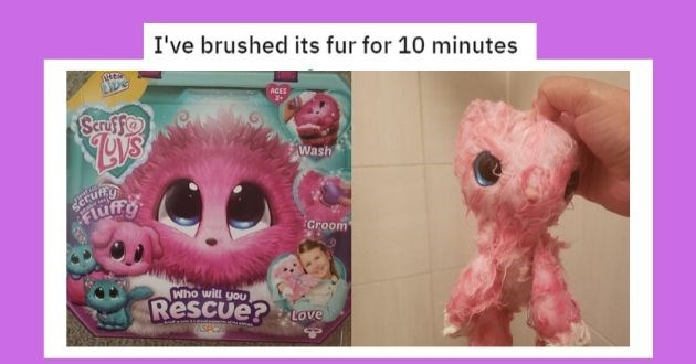 expectation reality reddit funny different online pictures | I've brushed its fur for 10 minutes Uetie LIDE AGES 2+ Scruf fo Wash Find us SCrufny Fluff Make us Groom Who will Rescue? Love Suru L laa prou uorterofme ASPCA ASPCA