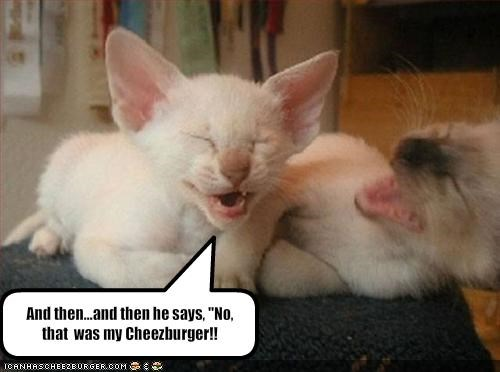 Cheezburger Image 1110865664