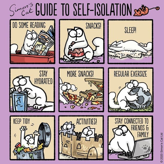 top ten daily infographics guides | Animal - Simon Cat GUIDE SELF-ISOLATION S DO SOME READING SNACKS! SLEEP! STAY HYDRATED MORE SNACKS! REGULAR EXERSIZE KEEP TIDY ACTIVITIES! STAY CONNECTED FRIENDS& FAMILY 2020 Simon's Cat Ltd