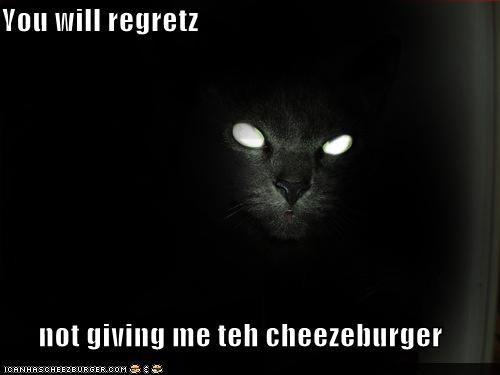 Cheezburger Image 1111923968