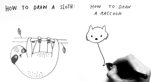 cool how to draw animals guides | black and white illustration simple minimalism drawing DRAW SLOTH: DRAW RACCOON: