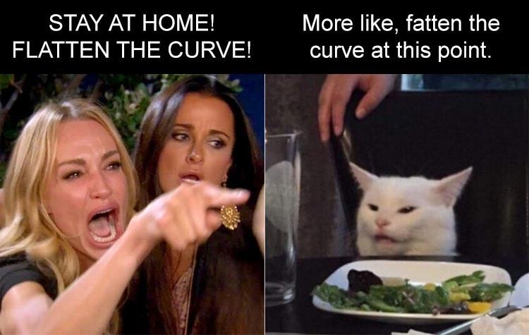 Fresh animal memes | woman yelling at a cat smudge STAY AT HOME! More like, fatten curve at this point. FLATTEN CURVE!