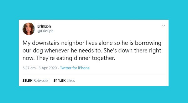 Funniest animal tweets | ErinEph @ErinEph My downstairs neighbor lives alone so he is borrowing our dog whenever he needs She's down there right now. They're eating dinner together. 5:27 am 3 Apr 2020 Twitter iPhone 35.5K Retweets 511.5K Likes