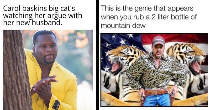 Funny memes about the TV show 'Tiger King'   Anthony Adams Rubbing Hands Carol baskins big cat's watching her argue with her new husband   This is genie appears rub 2 liter bottle mountain dew