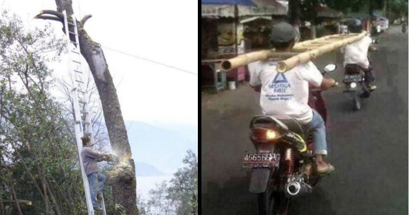 Failures of safety | man standing on a ladder using a chainsaw to cut down the tree the ladder is leaning against | two men carrying a ladder by balancing it around their necks while driving two separate motorbikes